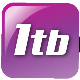 1TB-ICON